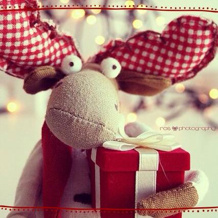 Foto dimostrazioni natalizie sabato